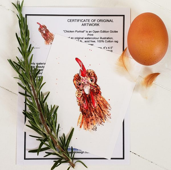 Chicken Portrait print with Certificate of Authenticity, sprig of rosemary, brown egg and feathers. on a white background.