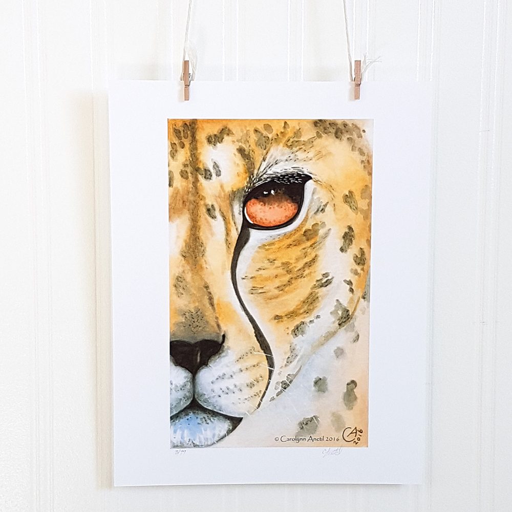 Feral Stare Animal Wall Decor Product