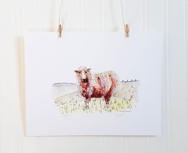 Gracie watercolour illustration hangs suspended by 2 miniature clothespins against a white background. A sheep stands facing left with its head turned toward the viewer. A pasture scene is in the background.