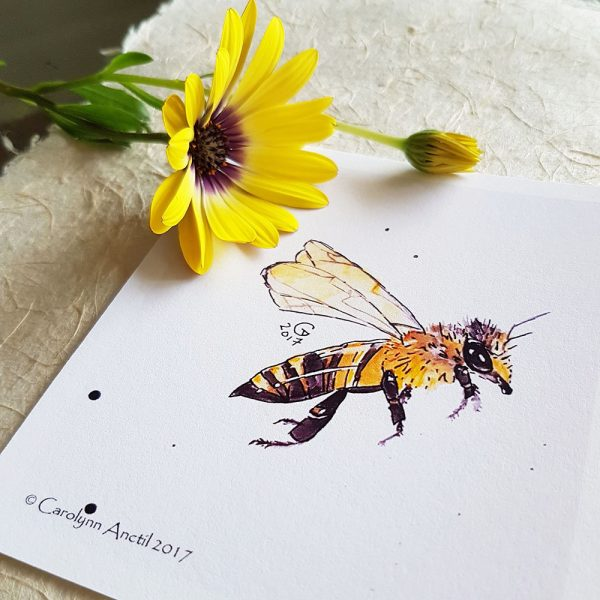Honeybee Mini print pictured with yellow gerber daisy.
