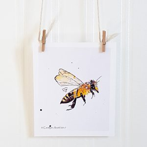Honeybee mini watercolour illustration hangs suspended by 2 miniature clothespins against a white background. A honeybee profile faces right.
