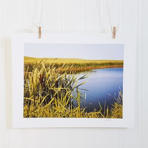 Prairie Pond photograph hangs suspended by 2 miniature clothespins against a white background. A brilliant blue pond is surrounded by farmer's fields and pussy willows in the foreground on the bottom left.