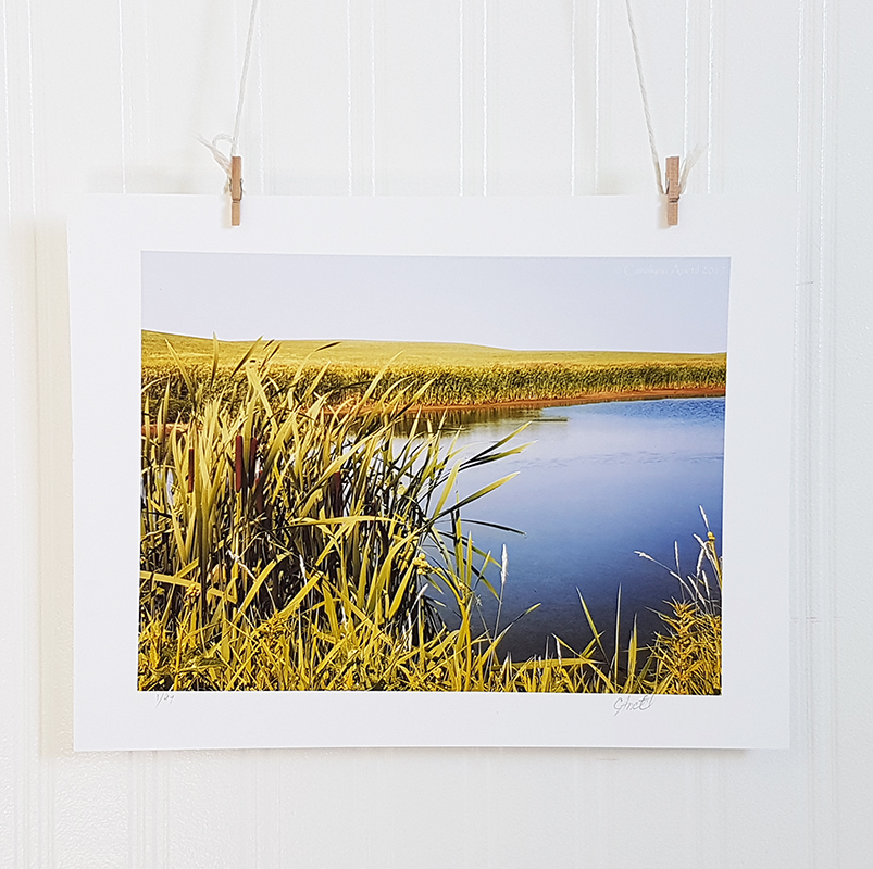 Prairie Pond Nature Photograph Print Product