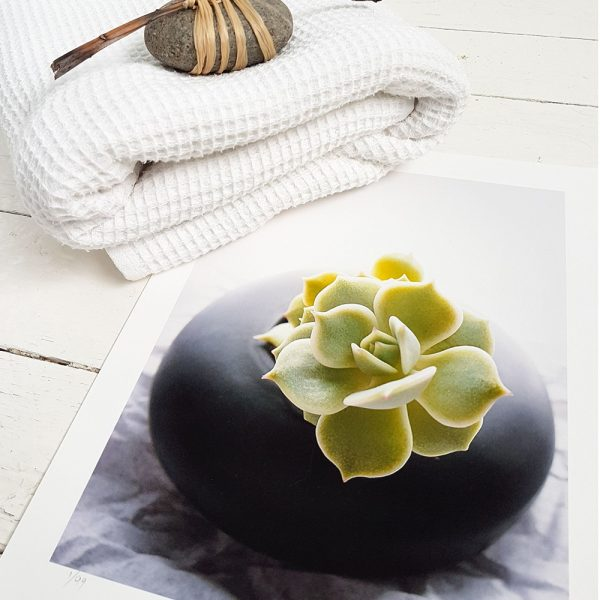 Succulent Spa Print pictured with a folded towel and raffia wrapped rock.