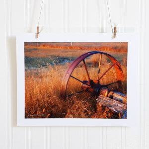 Sunlit Wagon Wheel photograph is suspended by 2 miniature clothespins against a white background. Rusted wagon wheel sits in a field of overgrown grass and is lit with the setting sun.