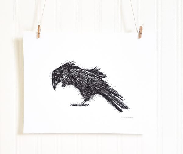Rumpled Raven ink drawing in black and white is suspended by 2 miniature clothespins against a white background. Raven is facing left and is done in the scribble style.