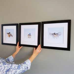 Chickadee Triptych Framed