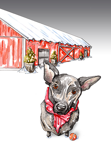 Snowy red barn with a farm dog in the forefront.